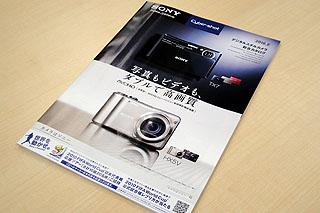 DSC02639.jpg