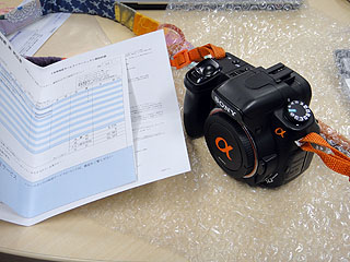 DSC07696.jpg