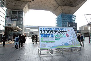 eco01.jpg