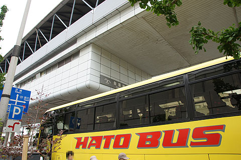 hato36.jpg