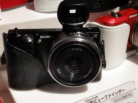 DSC08944.jpg
