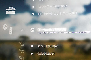 bms13.jpg